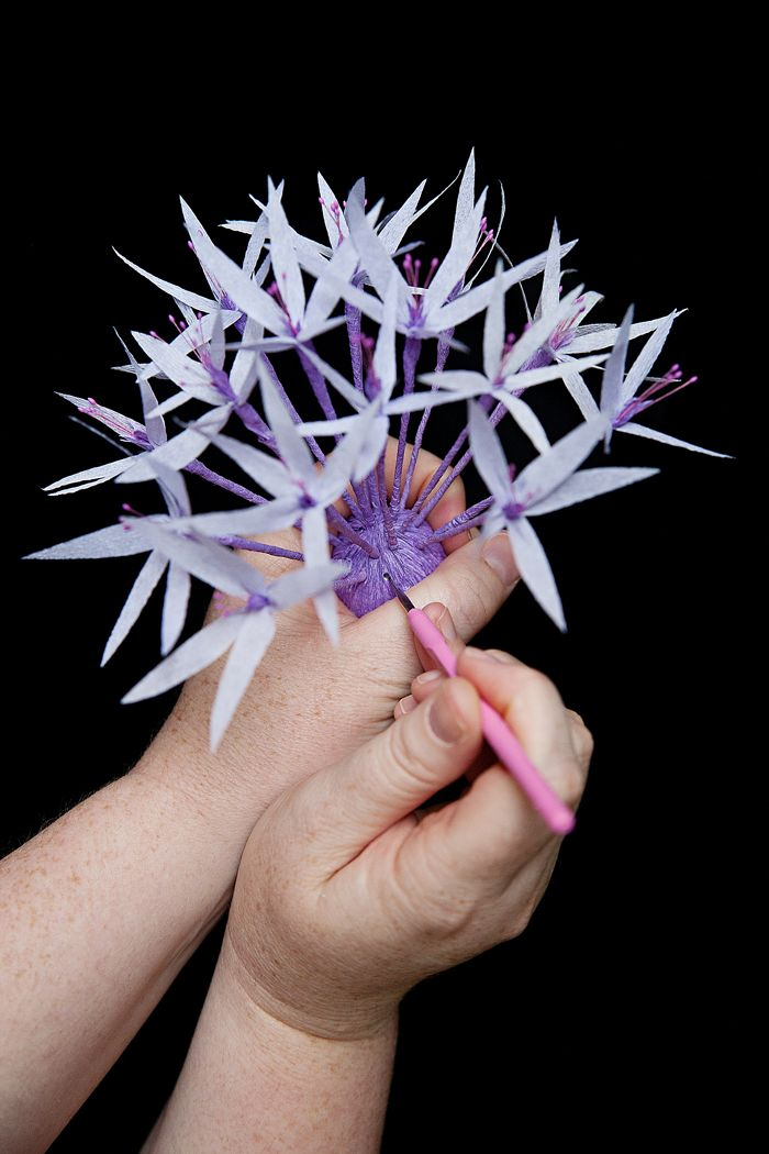 Paper Allium Tutorial – Design*Sponge
