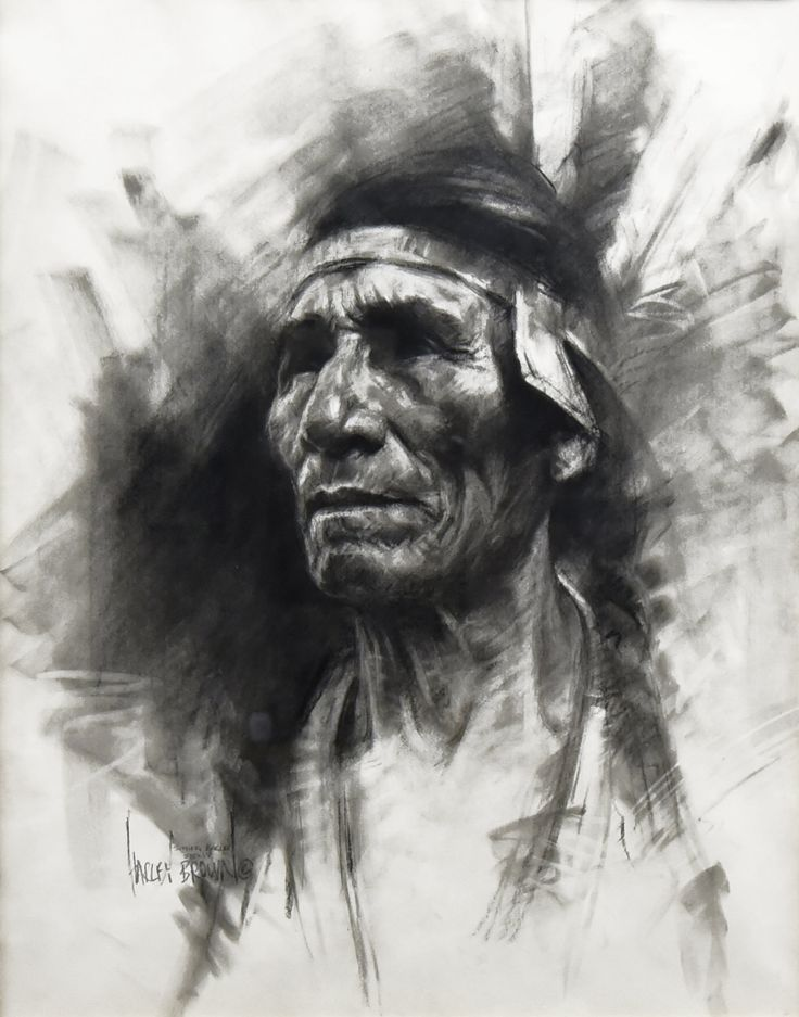 Sitting eagle by harley brown the eddie basha collection charcoal drawingspencil