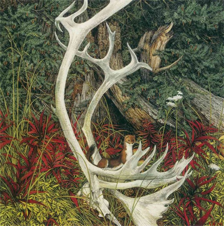 "Bev Doolittle ""THE SACRED CIRCLE""  this is a close up of one section"