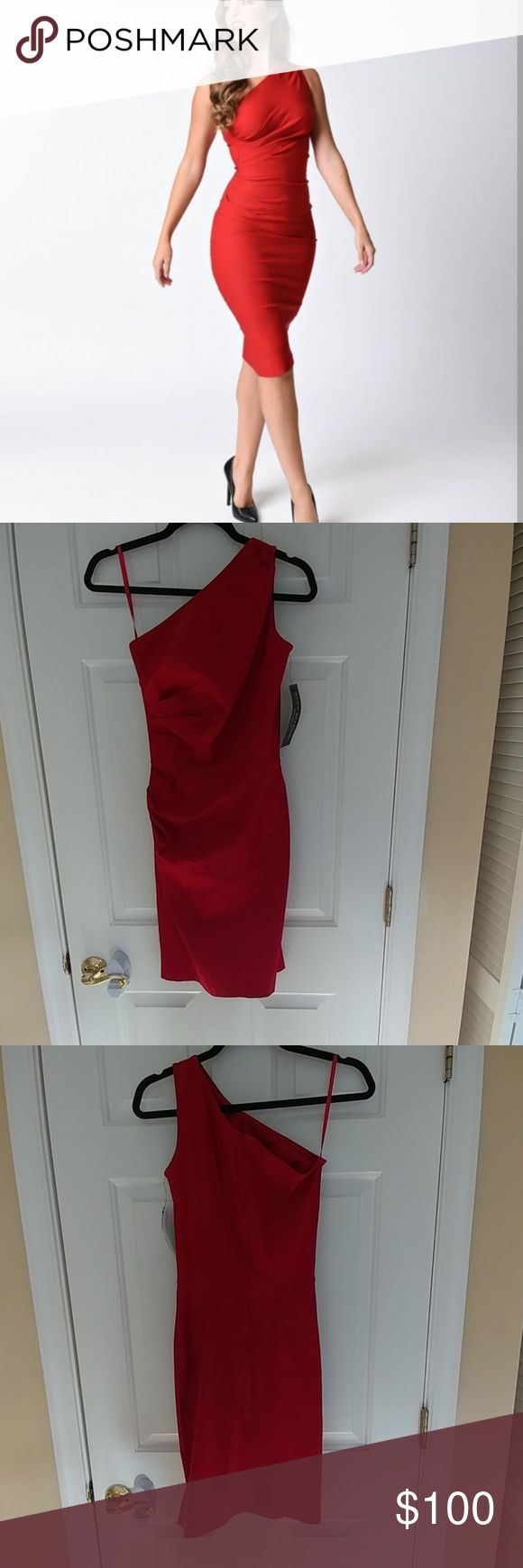 Stop Staring Ava Dress NWT never worn size 8 beautiful vintage style dress. Curve hugging and extremely flattering, the material has fairly good stretch as well. French Connection Dresses One Shoulder