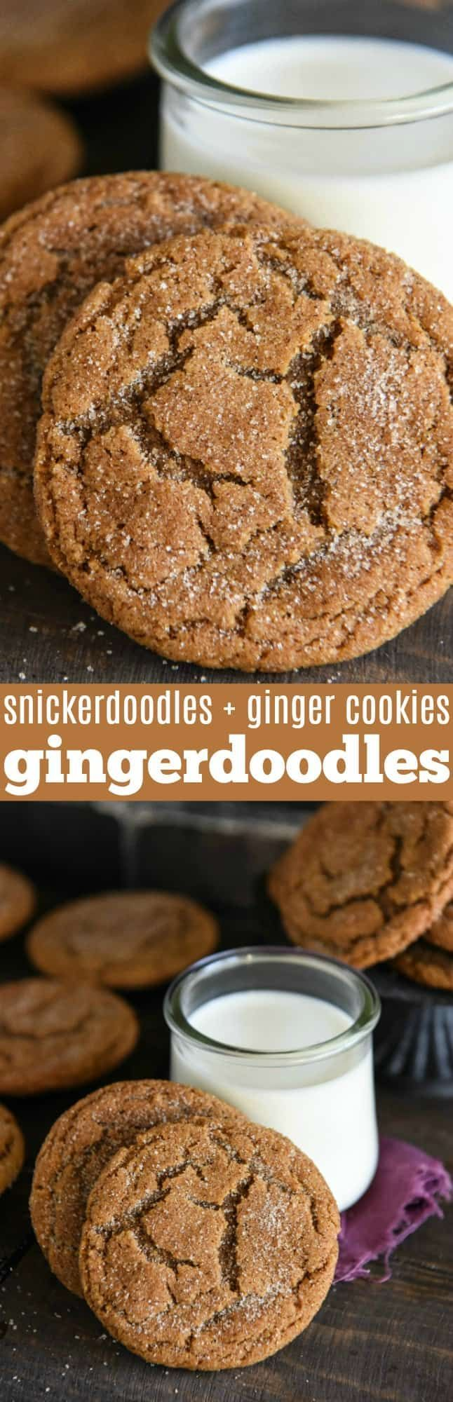 Gingerdoodle Cookies: a cross between a chewy gingerbread cookie and a classic snickerdoodle to create a new Christmas cookie that will be an instant favorite!