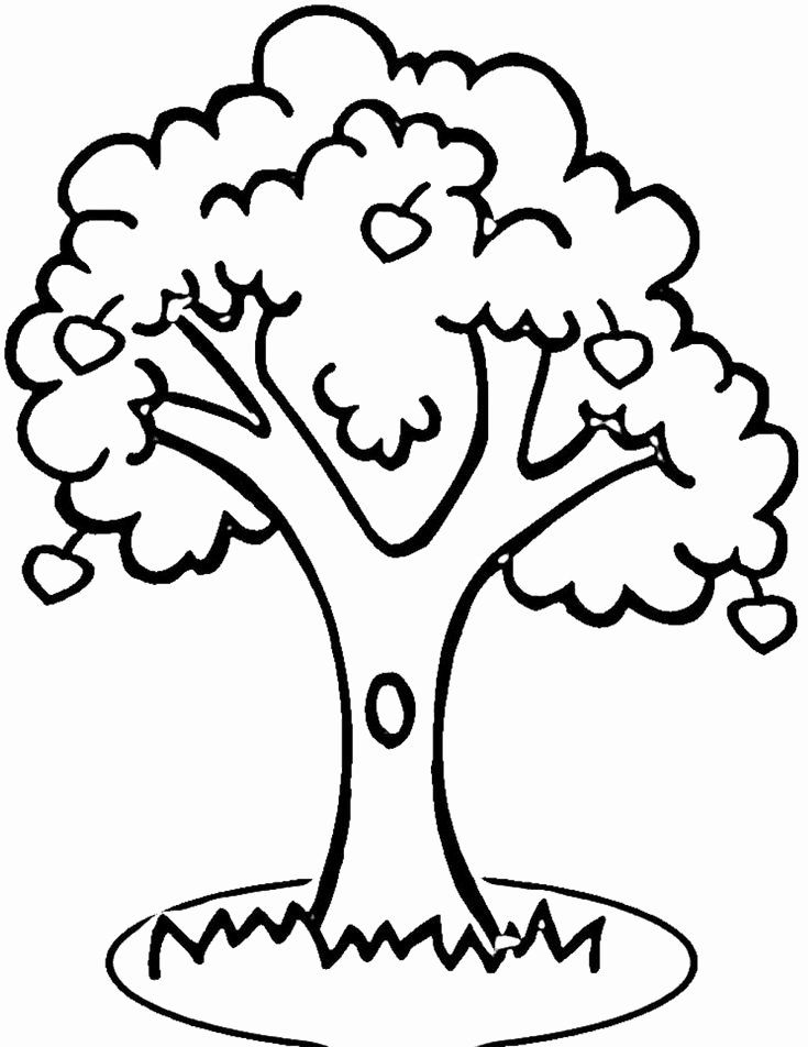 Apple Tree Coloring Page Lovely 100 Best Images About Coloring Pages For Family Reunion On Pintere Tree Coloring Page Apple Coloring Pages Fruit Coloring Pages