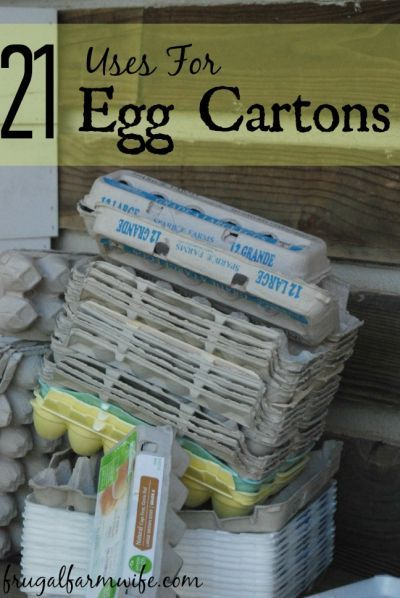 21 Creative uses for egg cartons ranging from fire starter, to paper bouquets, to growing micro-greens