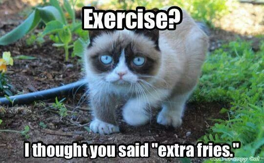 Lol! Grumpy cat...
