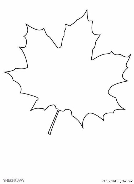 8 best droits de l\'enfant images on Pinterest | Leaves, Coloring ...
