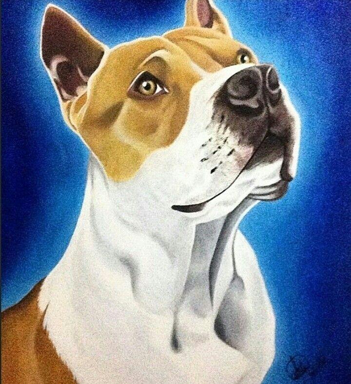 Pitbull Dogs Acrylic Painting Pet Portraits Acrylic Painting