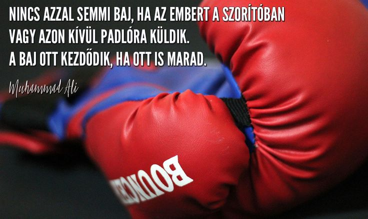 """""""Inside of a ring or out, ain't nothing wrong with going down. It's staying down that's wrong."""" - Muhammad Ali"""