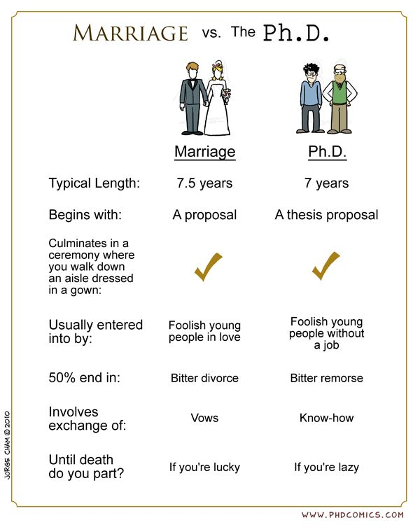 Marriage vs. The Ph.D.  For those of you considering one or the other, consult this handy chart.