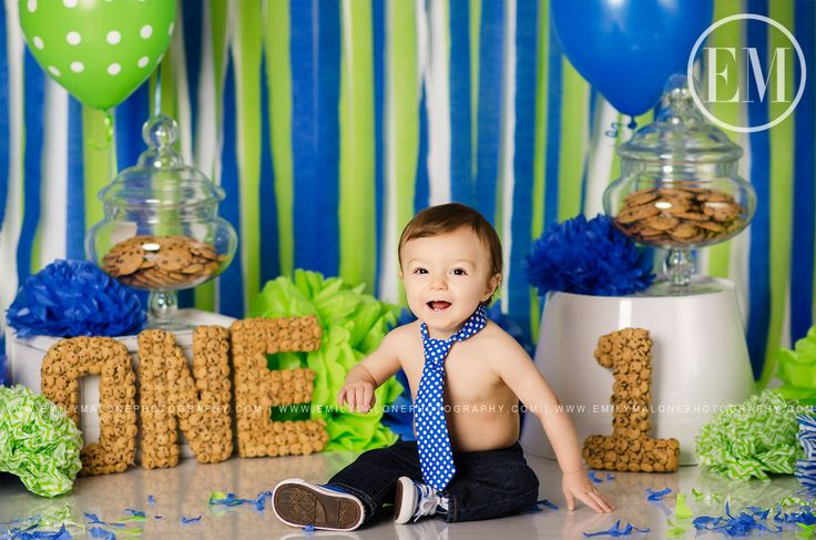 Emily Malone Photography | Dayton OH | Baby's First Birthday, Infant Toddler Photo ideas, Cake smash, Cookie Monster