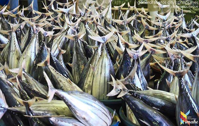🇵🇭🇵🇭🇵🇭🇵🇭 Gensan Fish Port Complex | General Santos | Philippines  #kimahetravelphotography #travelphotography #travellife #travelling #traveller #travel #friendniKIM #travelgram #explorephilippines #woogoph #traluluphilippines #choosephilippines #instaphoto #wow_philippines #itsmorefuninthephilippines #explorephmag #GoPH #tripmagazineph #traversephilippines #tuklas_pilipinas #wheretoph #f4f  #fujifilm #fujifilmxseries #xpphxgrid #xpph #follow4followbackalways #livetoexploreph…