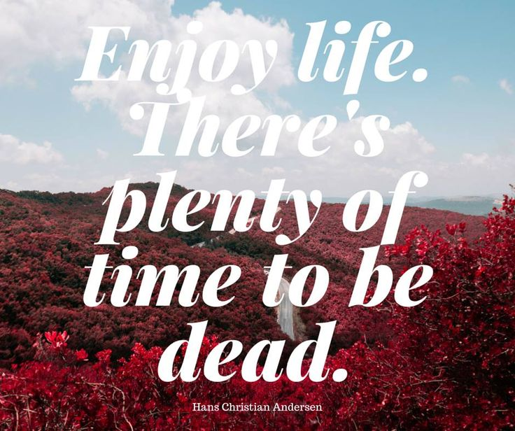Enjoy every day, enjoy yourself. #happiness #life #chillout