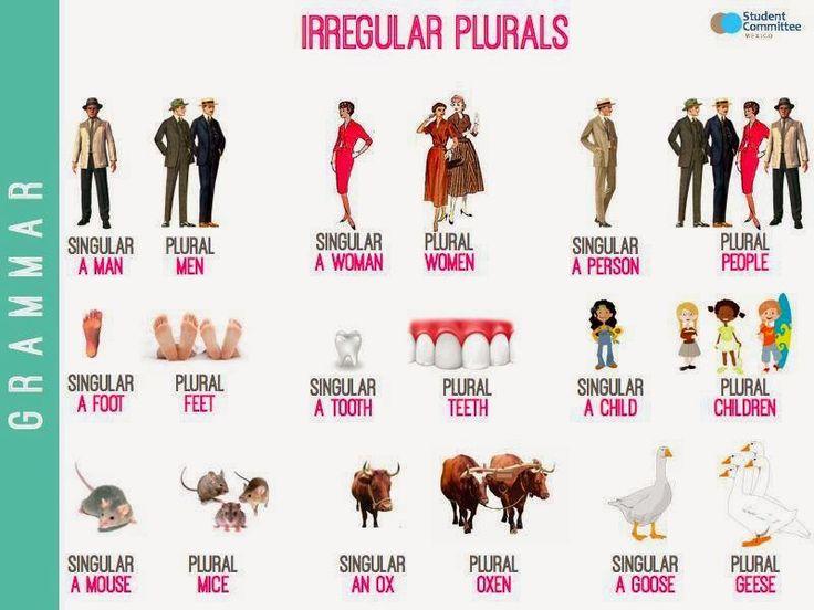 irregular plural nouns list - Google keresés