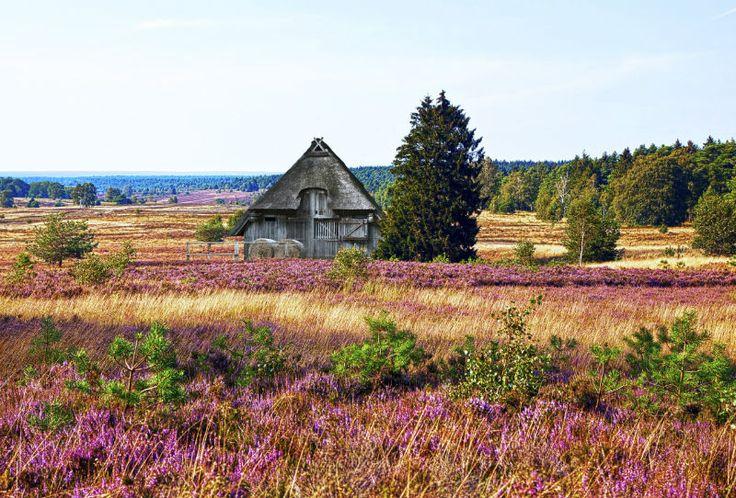 Tipps für die Lüneburger Heide