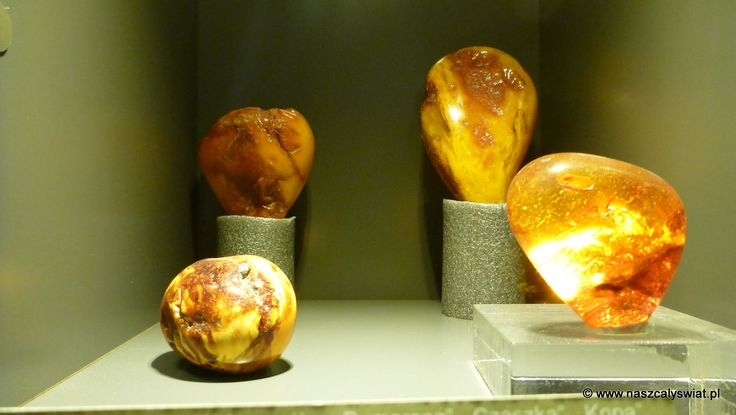 Muzeum Bursztynu (Amber Museum)