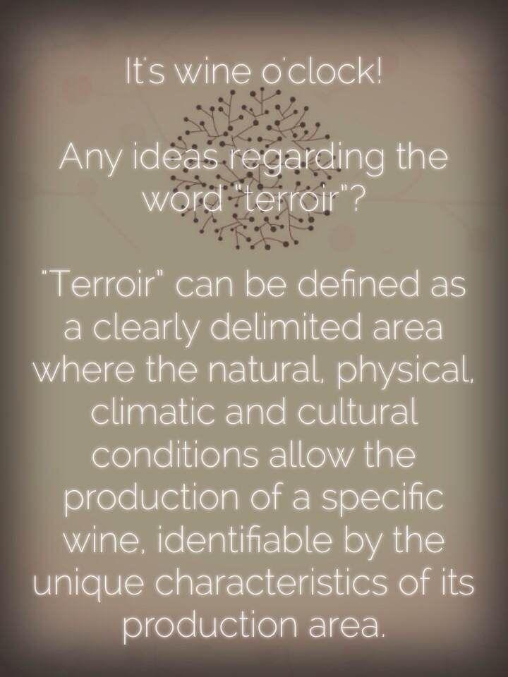 Any ideas regarding the word #terroir?   #wine #winelovers #wineoclock #wein #vinho San Marzano Cantine