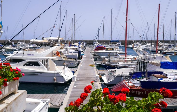"""Why you will love life in Puerto Calero"""