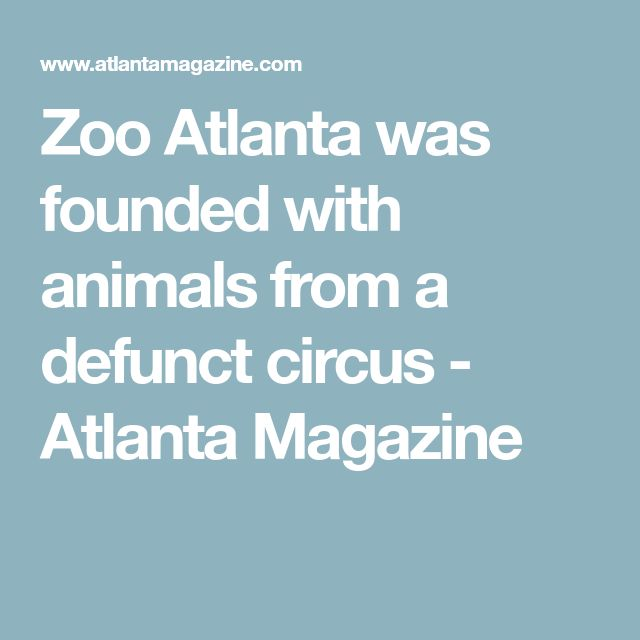 Zoo Atlanta was founded with animals from a defunct circus - Atlanta Magazine