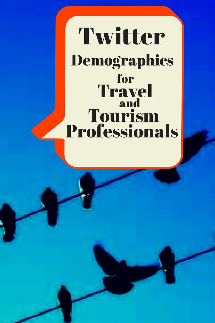 Twitter demographics for travel and tourism professionals. Twitter use is gaining among boomers using social media. #Twitterdemo
