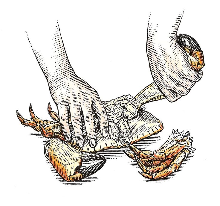 Crab by Dave Hopkins