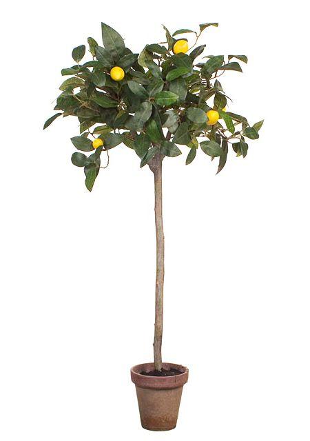 Silk Lemon Trees With Fake Lemons 2 Sizes