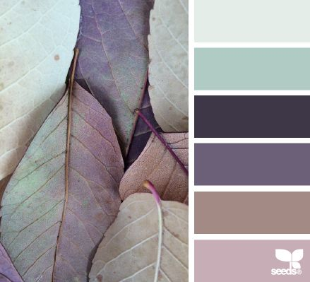 Woah. I love these. Leaf hues