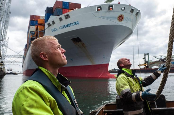 De roeiers in de haven van Rotterdam - Foto van Freek van Arkel