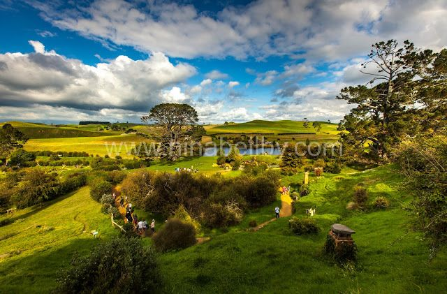 Hobbiton Wide Scenic Shot