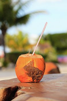 Coconut drink with straw in tropical cafe by Nadya&Eugene Photography #Mexico #Coconut