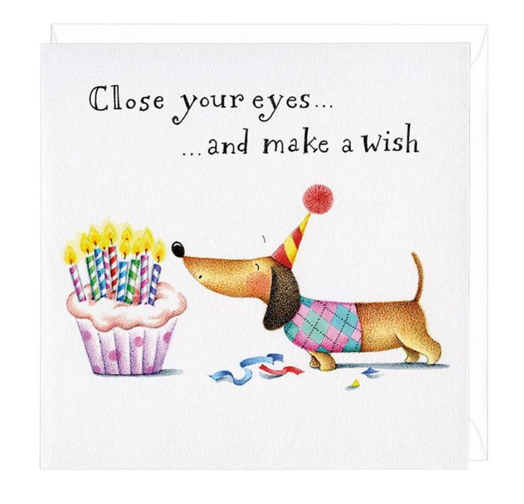 Make A Wish Dachshund Greeting Card