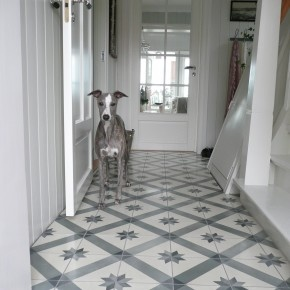 tiles for my hallway (without the dog)