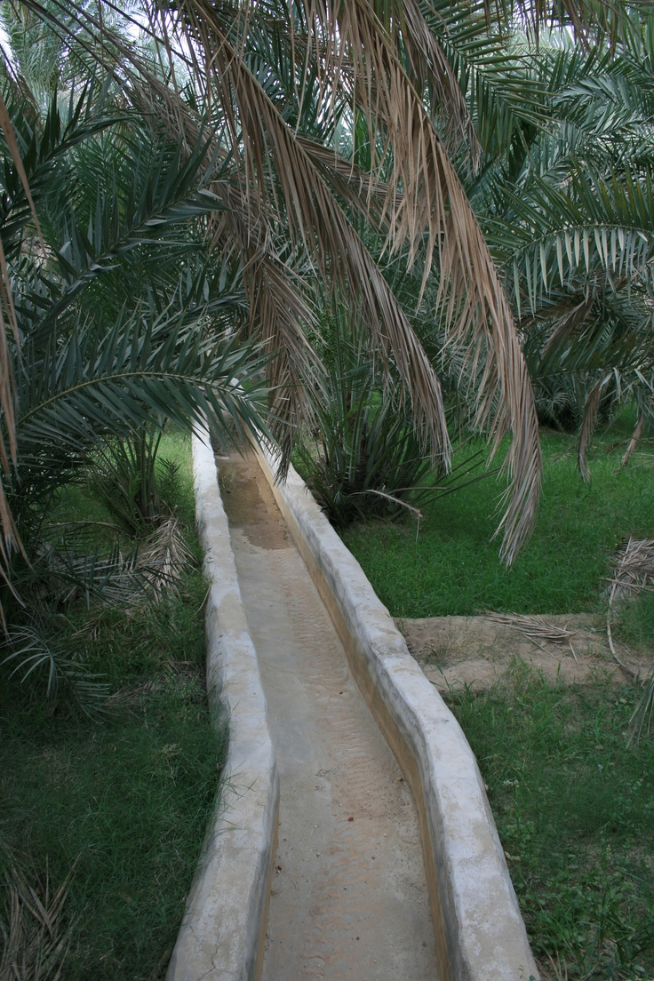Qanat is a water management system used to provide a reliable supply of water to human settlements and for irrigation in hot, arid and semi-arid climates. The technology is known to have developed in ancient Iran, and then spread to other cultures, but a recently discovered falaj systems both in al-Ain, UAE is dated to 1000 BC, and in Umm Safah, Sharja dated to the Iron Age. The value of a qanat is directly related to the quality, volume and regularity of the water flow.
