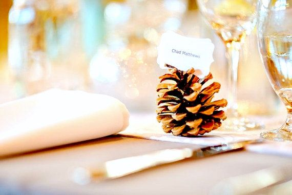 Delightful pine cone escort cards for your Woodland Wedding. 20 real pine cones to show your guests where to sit will give your table a