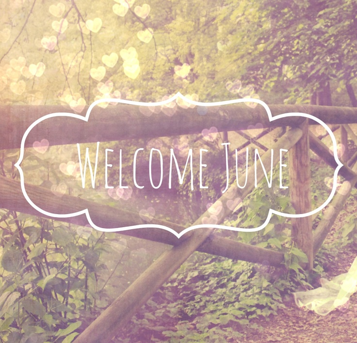 Welcome June La bottega di zanzu
