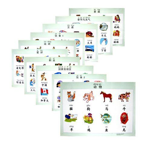 Chinese Character Poster Pack: Pinyin Language by Sinolingua, http://www.amazon.co.uk/dp/7802002982/ref=cm_sw_r_pi_dp_sP-Atb1V783YM