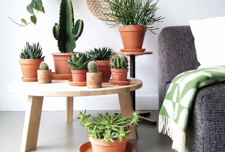 Interieur | DIY woonaccessoires stylen - Woonblog StijlvolStyling.com (beeld credits: Lisanne van der Klift)