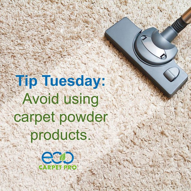 """It's difficult to keep up with pet hair. Professional deep cleaning can keep carpets looking """"like new"""" while removing odors and stains.  Learn More: http://bit.ly/EcoCarpetPro"""