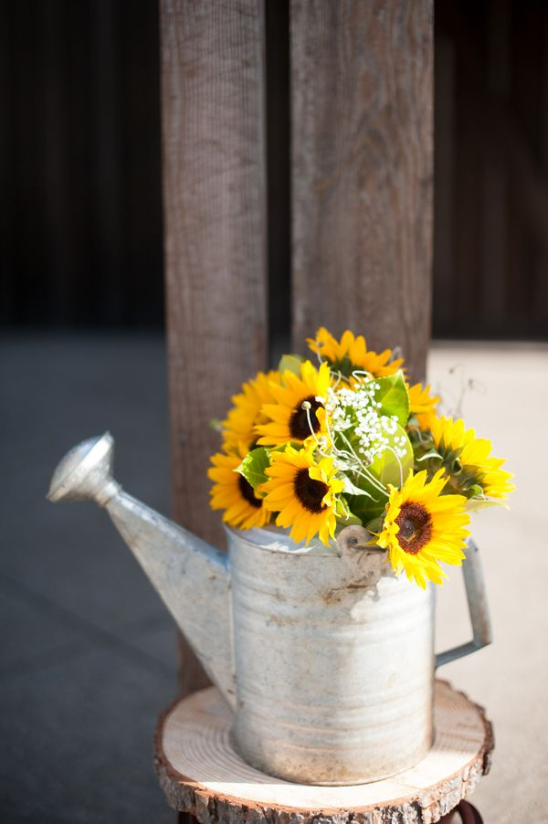 Best images about sunflower themed wedding on pinterest