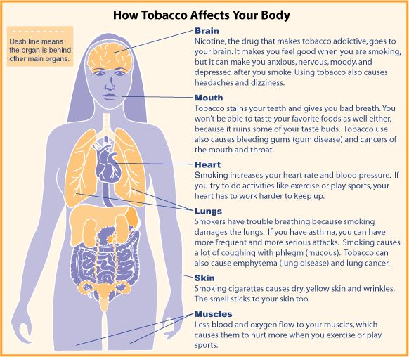 best smoking images health health tips and  effect of smoking essay what smoking does to your body essay essay for you
