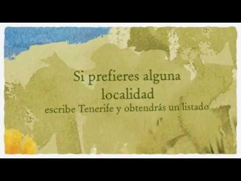 Como realizar un alquiler de coches en Gran Canaria http://alquilercochesgrancanaria.soloibiza.com/realizar-alquiler-coches-gran-canaria/ #alquilercochesgrancanaria