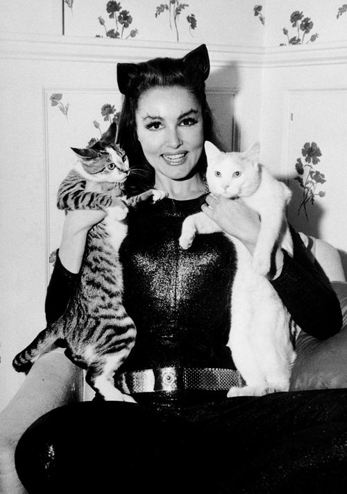vintagegal:  Julie Newmar on the set of the Batman TV show c. 1960s.        Definitely the best Catwoman.