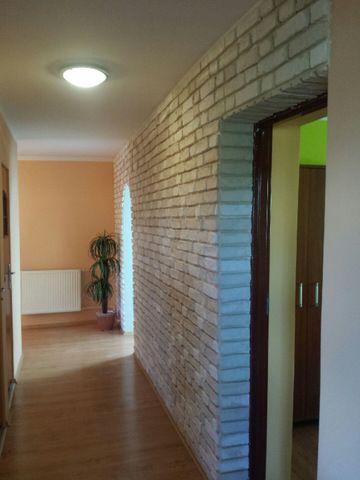 http://allegro.pl/kamien-dekoracyjny-stara-cegla-hit-na-allegro-i5458553402.html