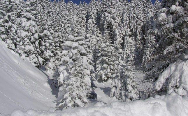 Περτούλι! #travel #greece #mountain http://diakopes.in.gr/trip-ideas/article/?aid=210006#ref=newsroombox