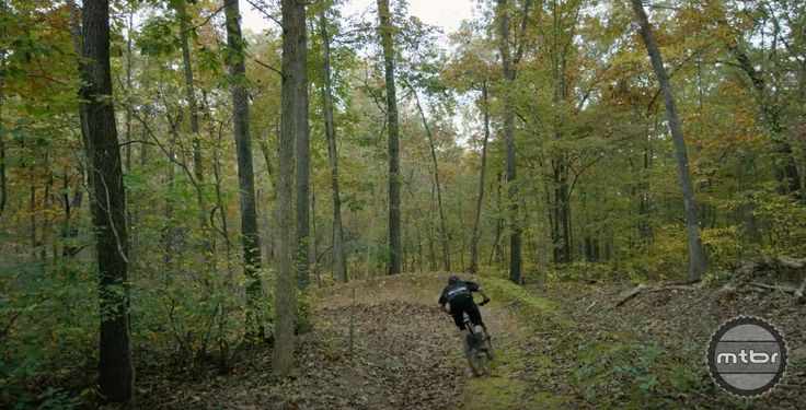 Who knew Arkansas had incredible trail riding? - Mountain Bikes For Sale