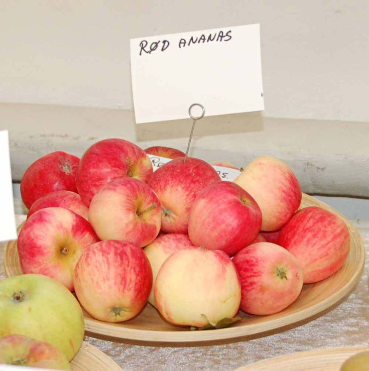 Rød Ananas æbler i fad