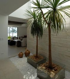jardines interiores japoneses - Buscar con Google