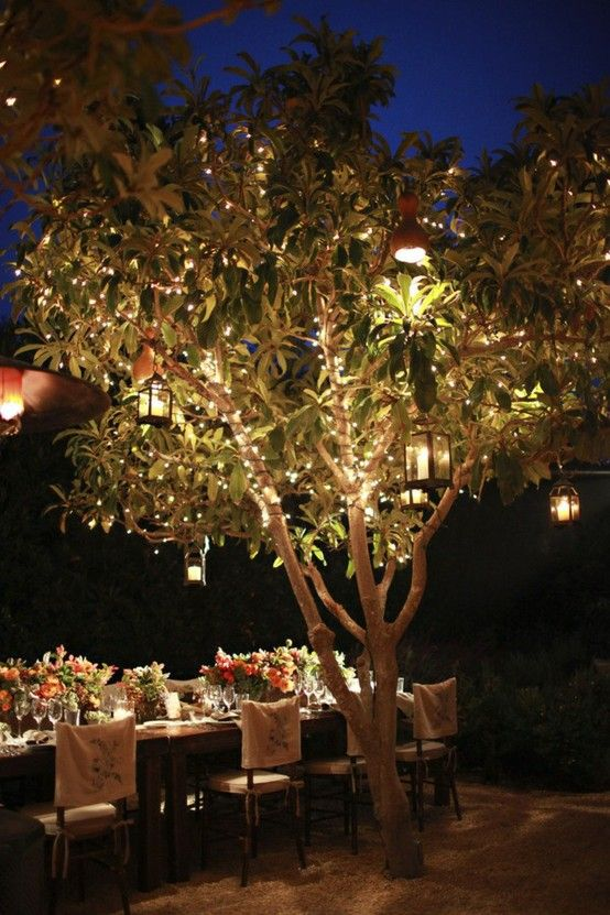 lighting in the trees for outside entertaining.