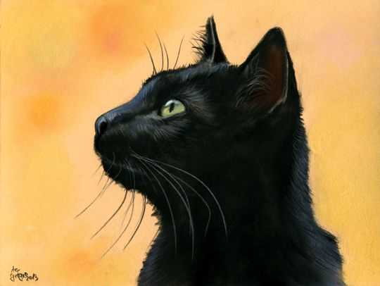 pastel painting by Angela-Carmen Griehl-Groß - art-ist-art.com. (Striking Profile of a Witch's Cat).