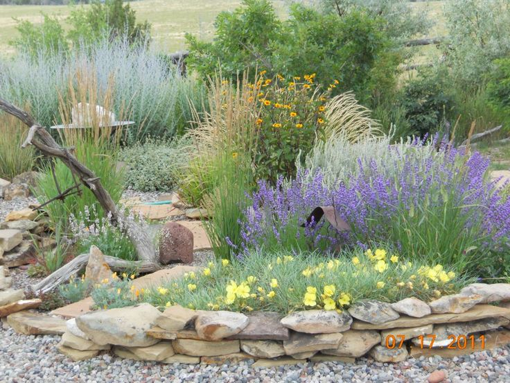 love the wildness of this, like incorporating boulder type rocks and love any and all types of grasses and things that look like grasses