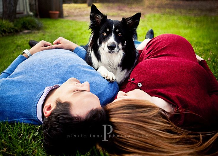 this would be cute with a toddler instead of the dog, too! Maternity | Pinkle Toes Photography