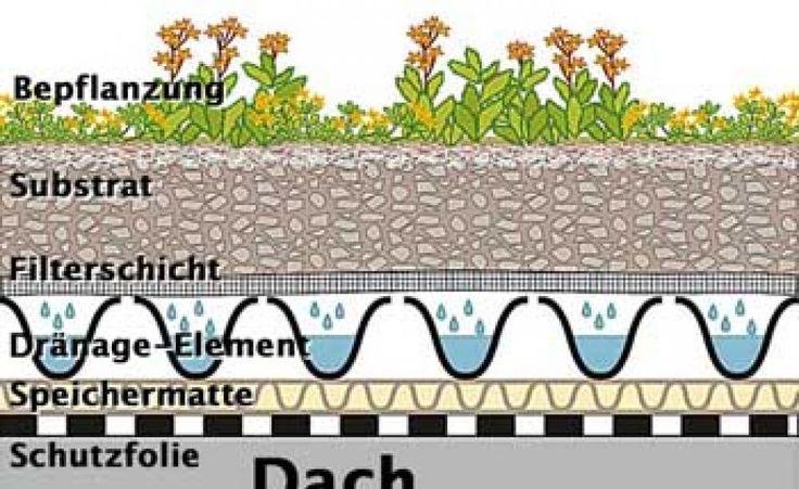 Aufbau einer extensiven Dachbegrünung (System Zinco)
